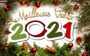 Meilleurs voeux 2021 - Mairie de Pont d'Ain